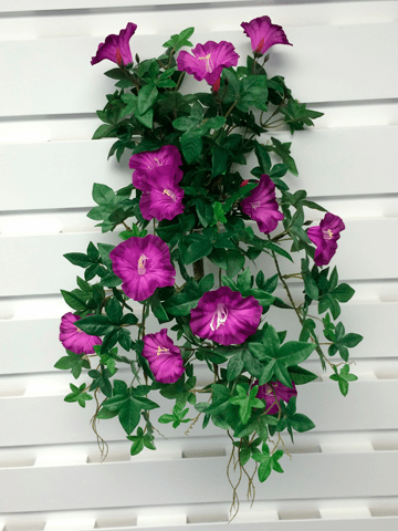 "1 Dozen - 20"" UV Protected Morning Glory Hanging Flower Bushes (shown in lavender)"
