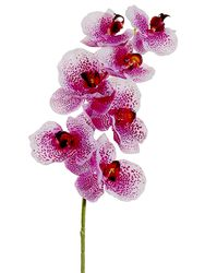 """1 dozen - 40"""" Phalaenopsis Orchid Stems - High Quality (Shown in Lavendar/Orchid)"""