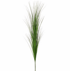 "1 dozen - 41"" Tall Marsh Grass Bush"
