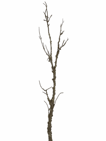 "1 Dozen - 45"" Artificial Mossy Branches"