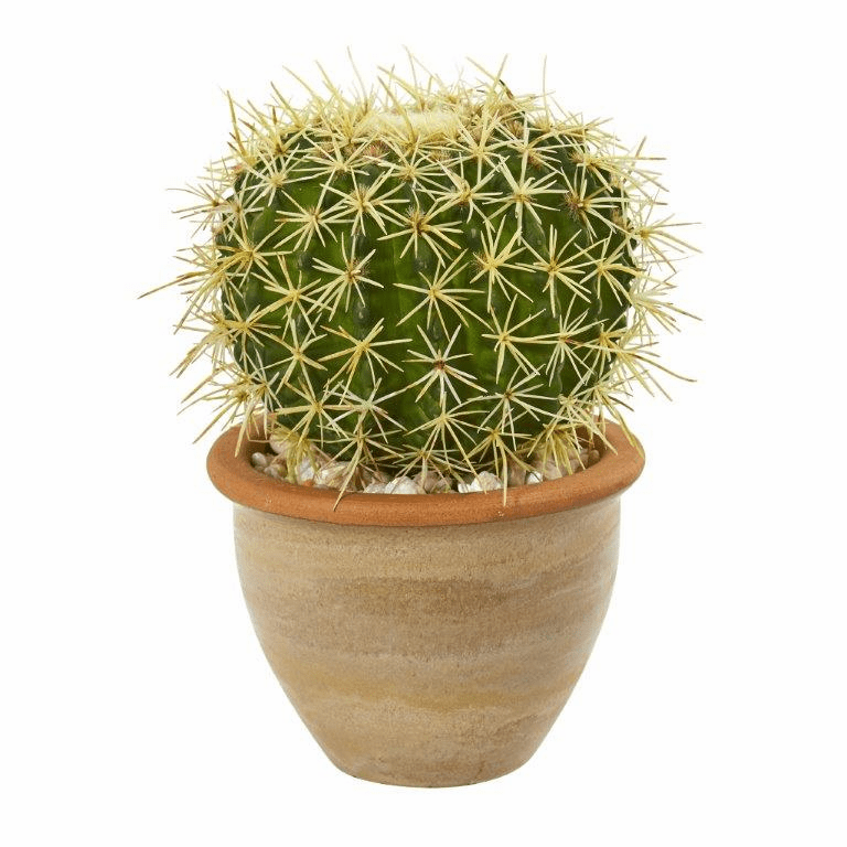 10� Cactus Artificial Plant in Decorative Ceramic Planter