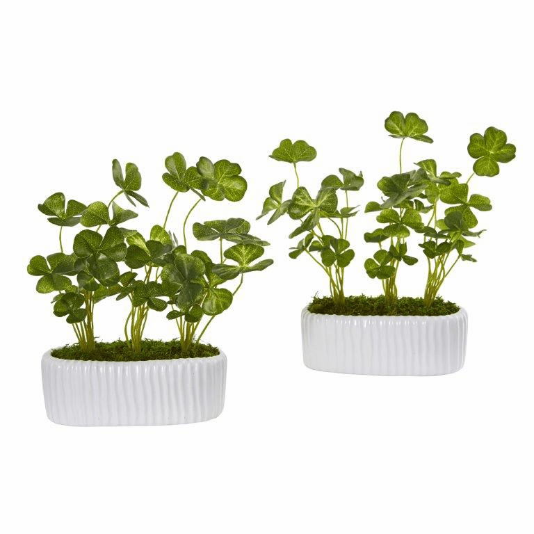 10� Clover Artificial Plant in White Planter (Set of 2)