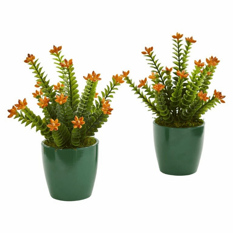 "10"" Sedum Succulent Artificial Plant in Green Planter (Set of 2)"
