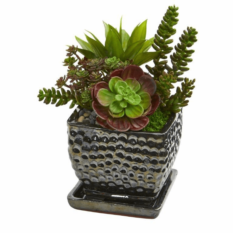 "10"" Succulent Garden Artificial Plant in Black Planter"