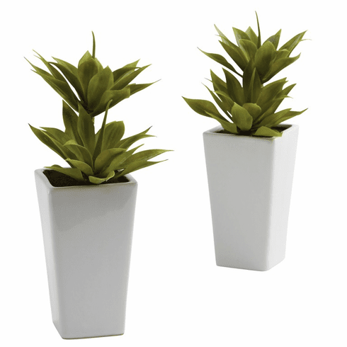 "11.5"" Double Mini Artificial Agave Plant with Planter (Set of 2)"