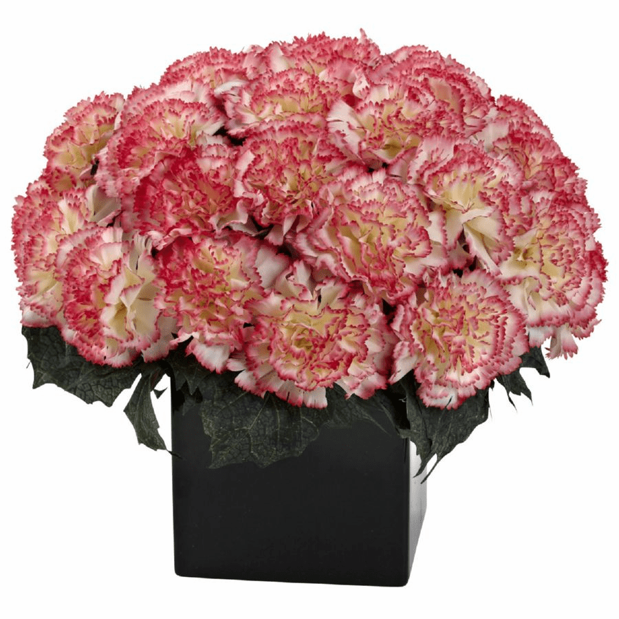 "11"" Carnation Arrangement in Vase - Cream / Pink Color"
