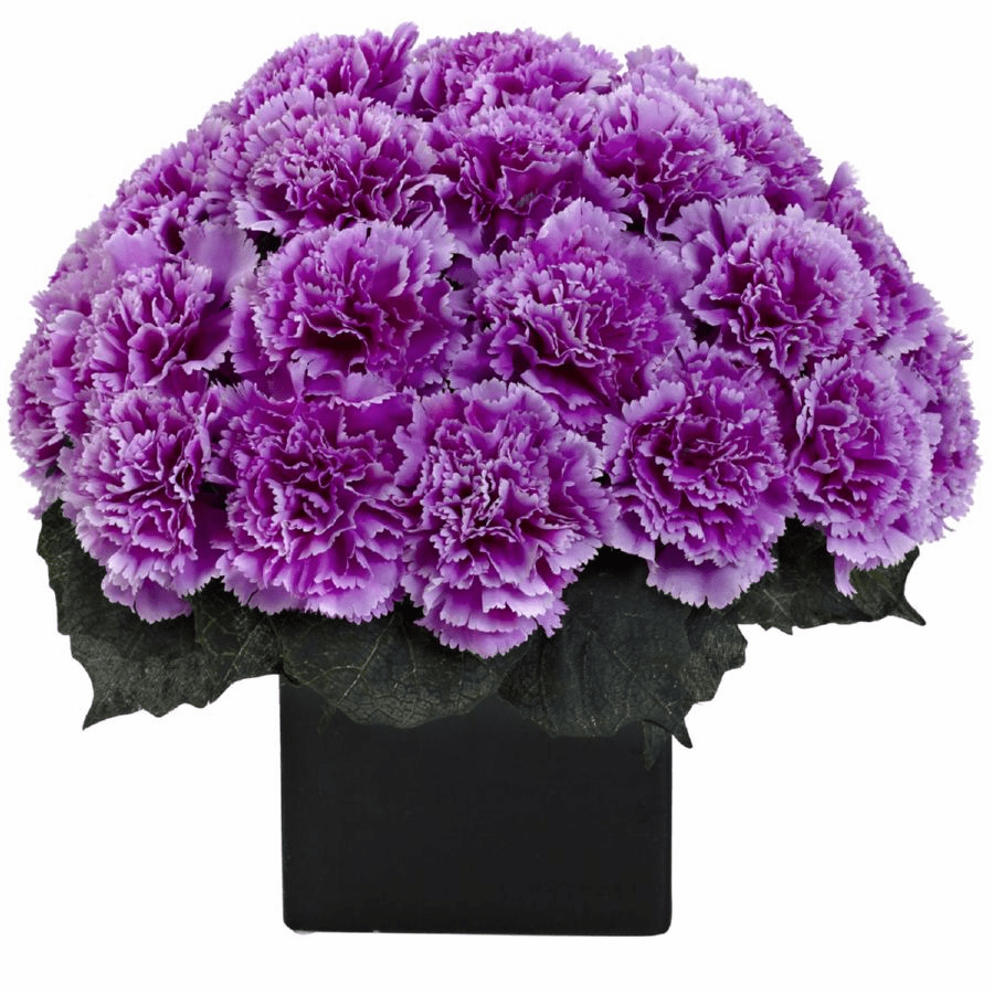 "11"" Carnation Arrangement in Vase - Purple Color"