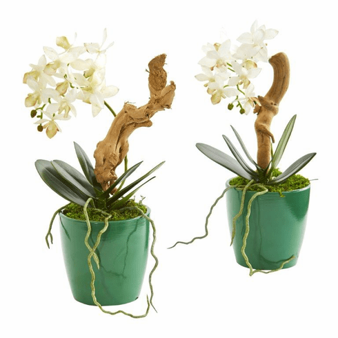 "11"" Mini Phalaenopsis Orchid Artificial Arrangement in Green Planter (Set of 2) - N/A"