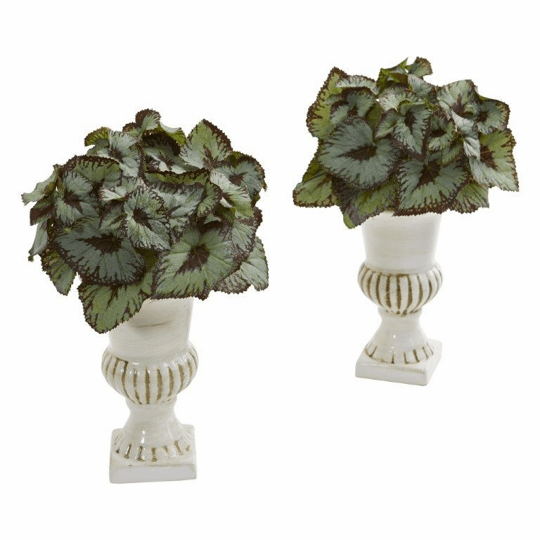 "11"" Rex Begonia Artificial Plant in White Urn (Set of 2)"