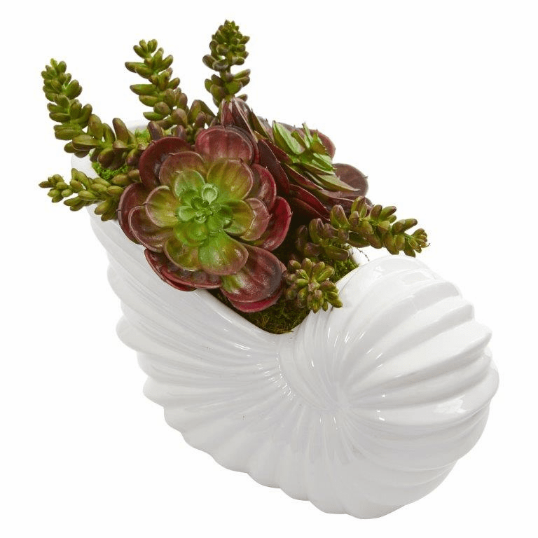 "11"" Succulent Garden Artificial Plant in Shell Planter"