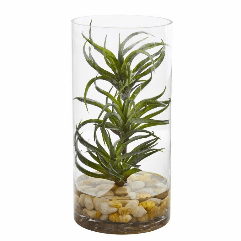 "12"" Air Plant Artificial Succulent in Glass Vase"
