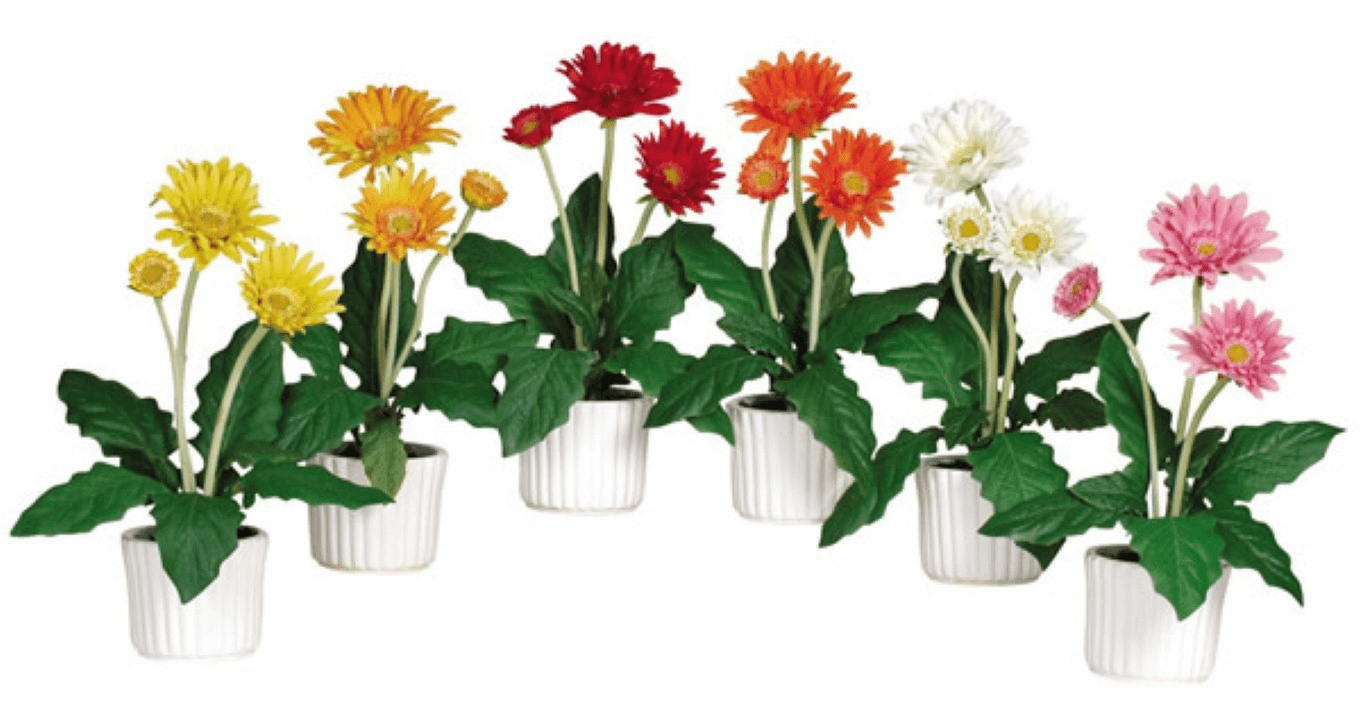 "12"" Gerber Daisy Artificial Flower Arrangement with White Vase (Set of 6)"