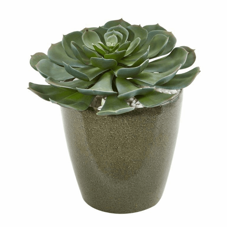 12� Giant Echeveria Succulent Artificial Plant in Planter
