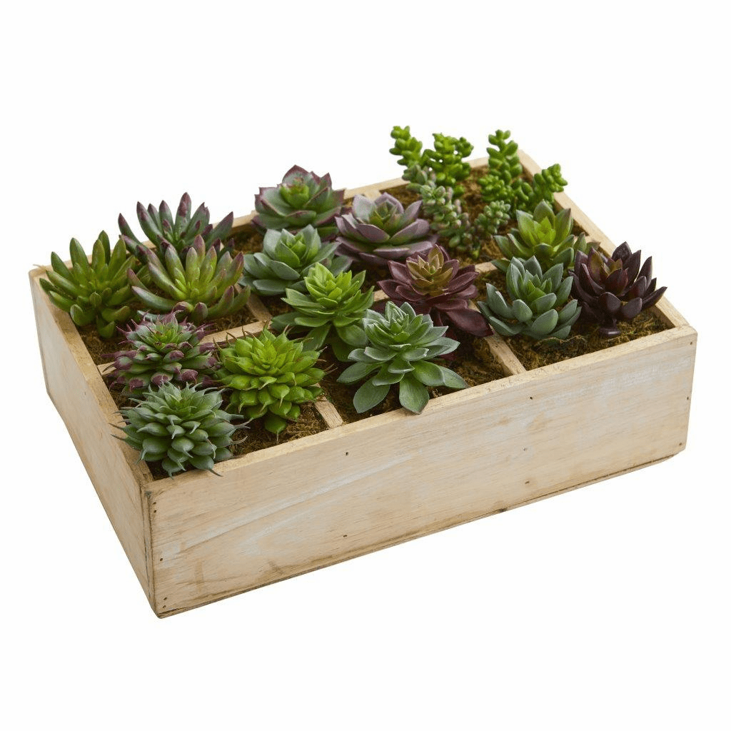 12� Mixed Succulent Garden in Tray Artificial Plant
