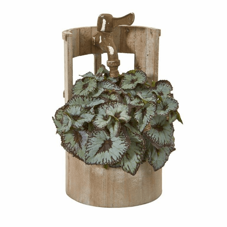 12� Rex Begonia Artificial Plant in Faucet Planter