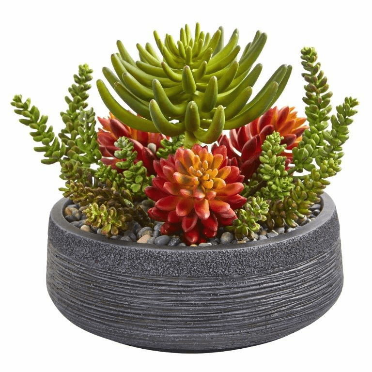 12� Succulent Garden Artificial Plant in Bowl