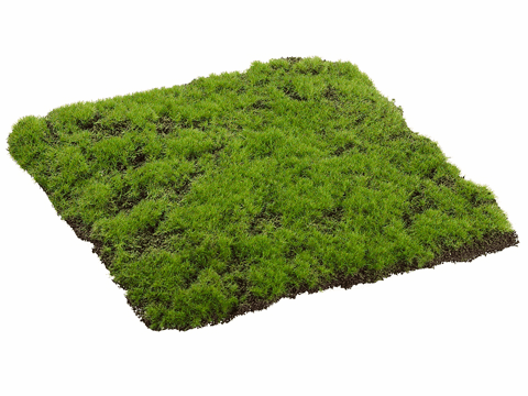 "12""Wx12""L Square Moss Sheet - Set of 6"
