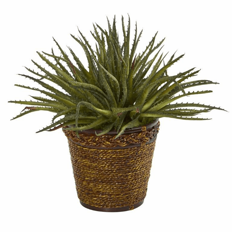 13� Aloe Artificial Plant in Basket