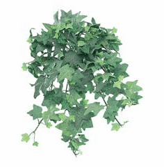"""13"""" Artificial Mini English Ivy Silk Plant Bush - Frosted Green - Set of 12"""