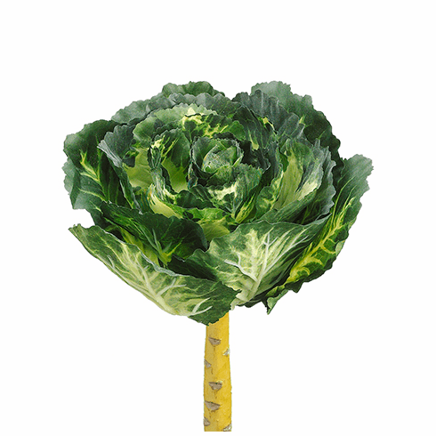 "13"" Artificial Real Touch Cabbage Head Stems - Set of 6"