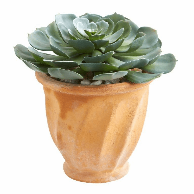 13� Giant Echeveria Succulent Artificial Plant in Terra Cotta Planter