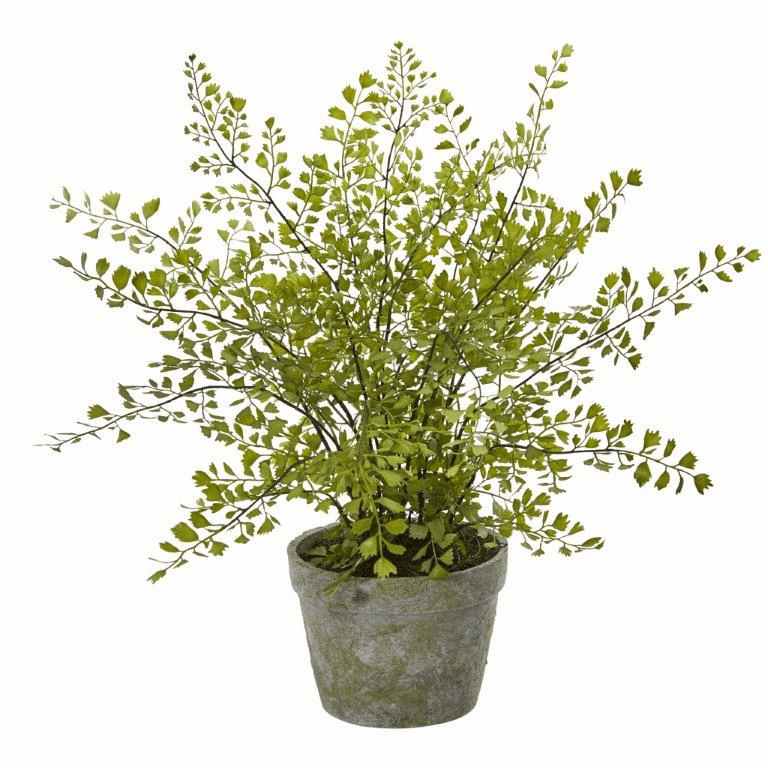 "13"" Maiden Hair Artificial Plant in Decorative Planter"