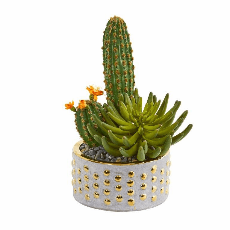 13� Mixed Succulent and Cactus Artificial Plant in Decorative Planter