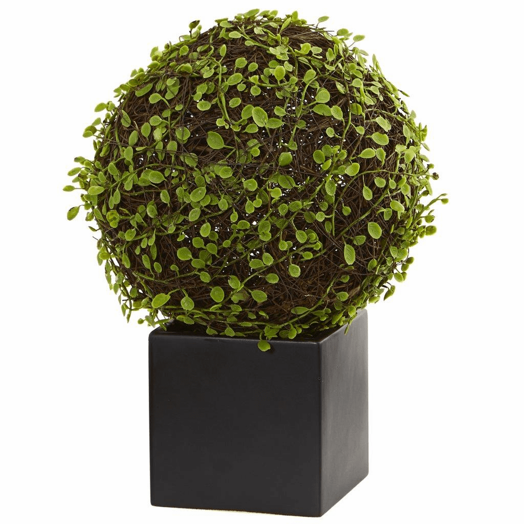 "13"" Mohlenbechia Ball Artificial Plant in Black Cube"