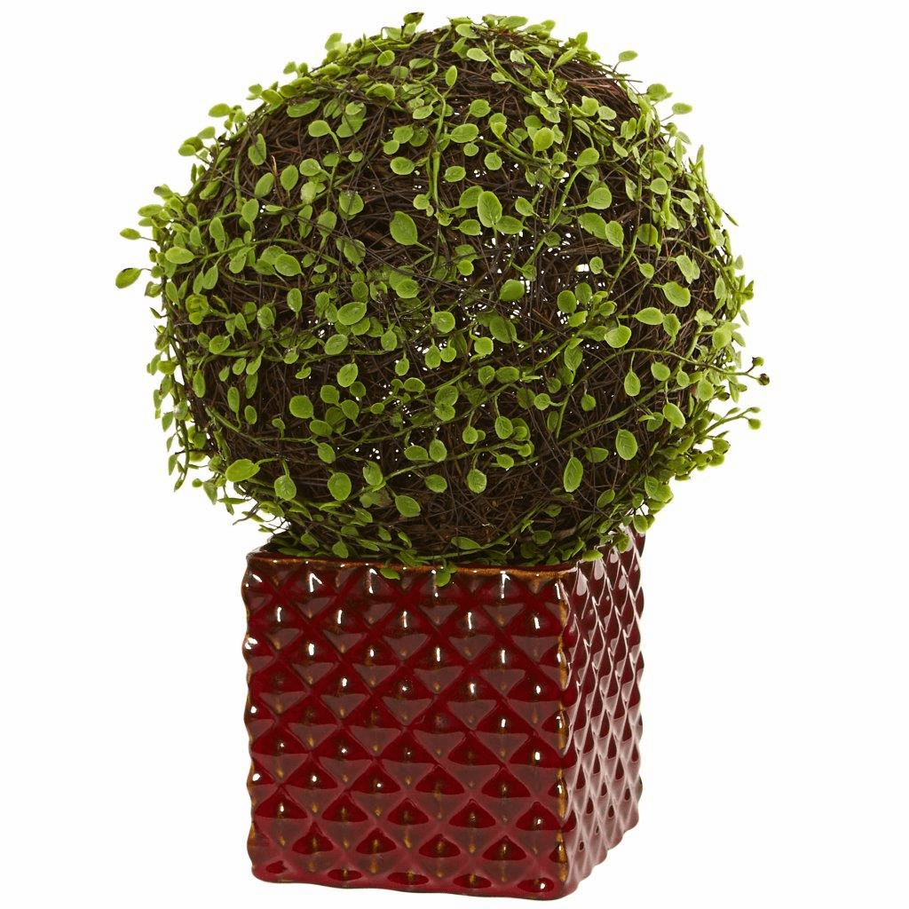 "13"" Mohlenbechia Ball Artificial Plant in Red Ceramic Cube"