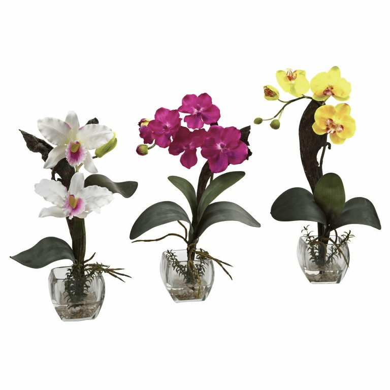 "14.5"" - 16"" Mixed Orchid w/Cube Arrangements (Set of 3)"