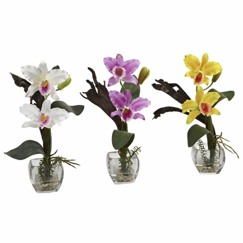 "14.5"" Mini Cattleya Orchid Arrangement (Set of 3)"