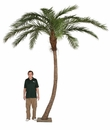 14' Artificial Phoenix Palm Tree - with Metal Plate