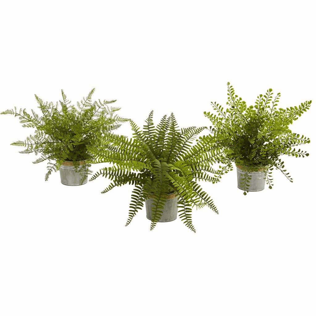 14� Assorted Ferns with Planter Artificial Plant (Set of 3)