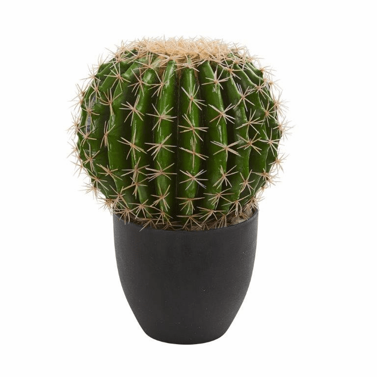 "14"" Barrel Cactus Artificial Plant Arrangement"
