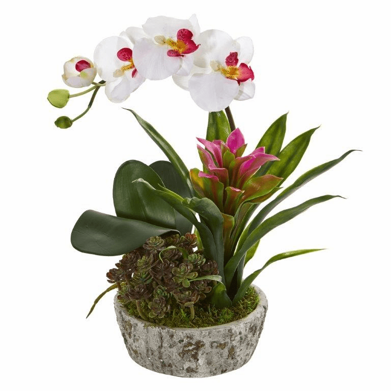"14"" Orchid, Bromeliad and Succulent Artificial Arrangement in Planter - White Purple"