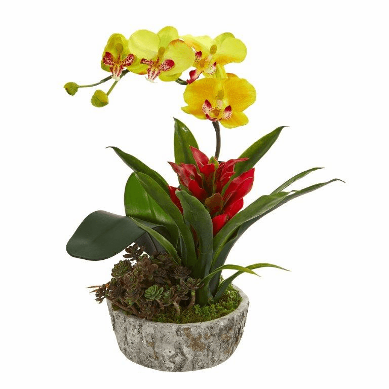 "14"" Orchid, Bromeliad and Succulent Artificial Arrangement in Planter - Yellow Red"