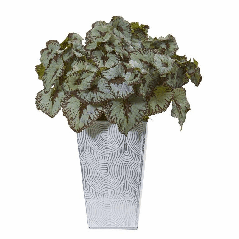 14� Rex Begonia Artificial Plant in Planter