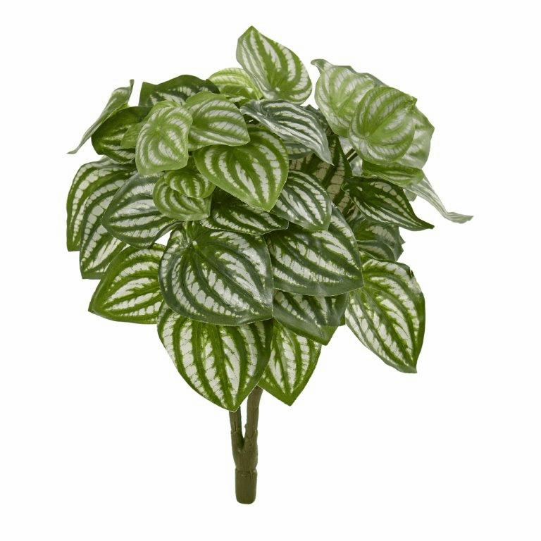14� Watermelon Peperomia Artificial Plant (Set of 6) (Real Touch)