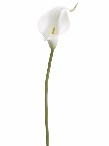 "15"" Artificial Mini Calla Lilly Flower - Set of 12"