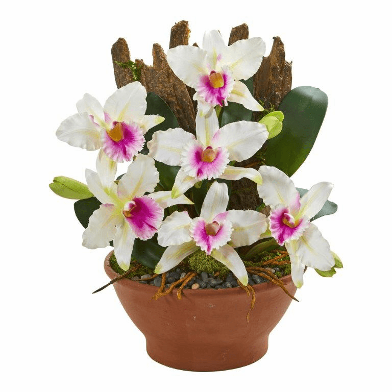 "15"" Cattleya Orchid Artificial Arrangement in Clay Vase - White"