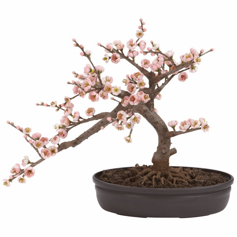 "15"" Cherry Blossom Bonsai Silk Tree"