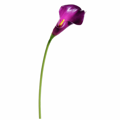"15"" Mini Artificial Calla Lily Spray Stem - Set of 12"
