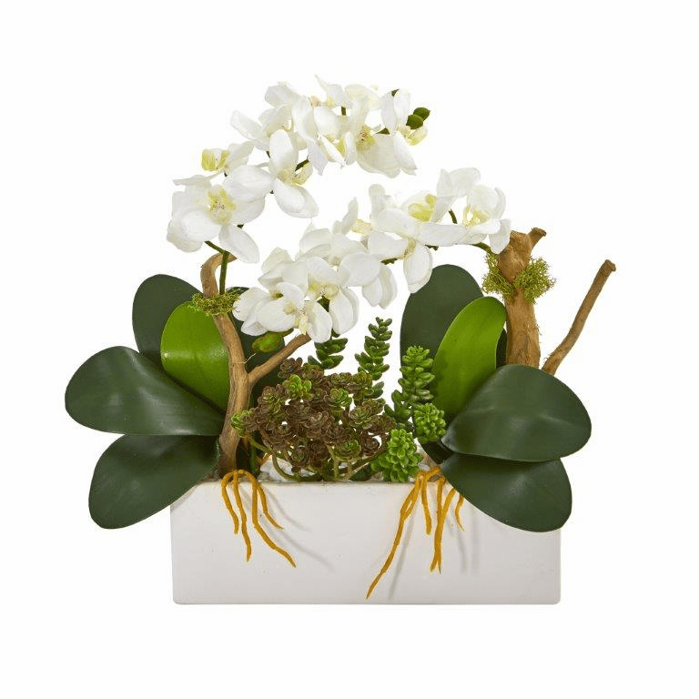 15� Phalaenopsis Orchid and Succulent Artificial Arrangement - White