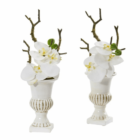 """15"""" Phalaenopsis Orchid Artificial Arrangement in White Urn (Set of 2) - White"""