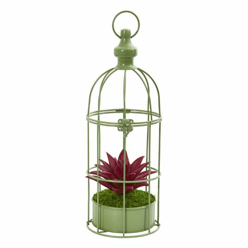 "15"" Succulent Artificial Plant in Decorative Cage"