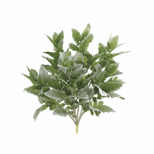 "16.5"" Artificial Dusty Miller Bush - 1 Dozen"