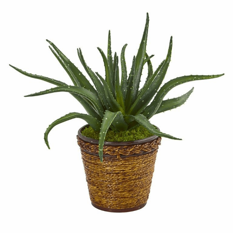 16� Aloe Artificial Plant in Basket