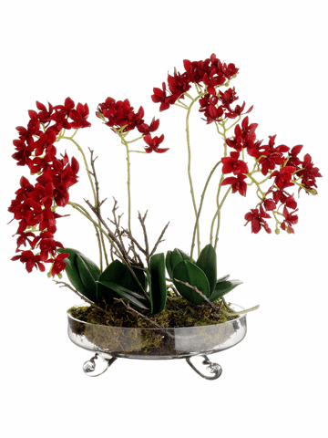 "16"" Artificial Mini Phalaenopsis Orchid Plant Arrangement in Glass Vase"