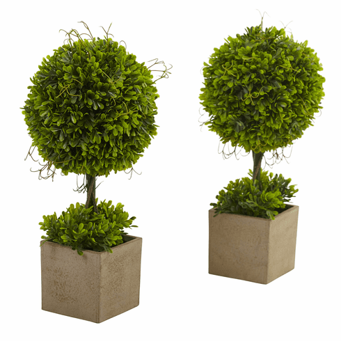 """16"""" Boxwood Topiary in Planters (Set of 2)"""