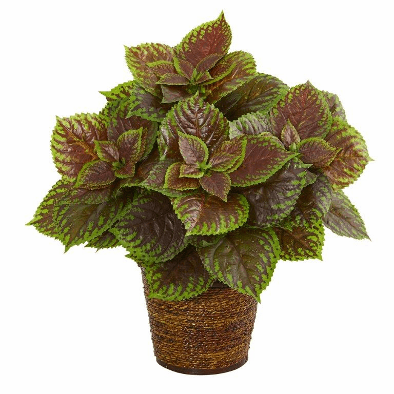 16� Coleus Artificial Plant in Basket (Real Touch)